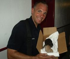 A Willoughby, Ohio, firefighter holds a box with kittens who were saved from a fire.