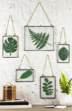 [orginial_title] – DecoArt Inc. Framed Faux Pressed Leaves — Create an upscale look without the cost. Framed Faux Pressed Leaves — Create an upscale look without the cost. Diy Wand, Mur Diy, Leaf Projects, Wood Projects, Deco Nature, Nature Decor, Deco Floral, Home And Deco, Plant Decor