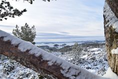 Winter Wonderland in Bergen :-)