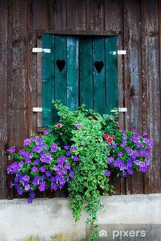 wooden window decorated with flowers Vinyl Wall Mural - Private Buildings Garden Windows, Garden Doors, Window Box Flowers, Window Boxes, Old Windows, Windows And Doors, Hydrangea Care, Unique Doors, Window View
