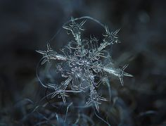 You've Never Seen a Snowflake in This Much Detail - AccuWeather.com