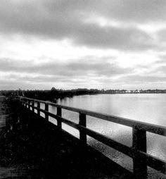Florida Memory - View of Garnier Bayou. 1947