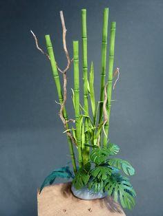jungle plants in Guadalcanal - Google Search