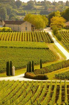 Saint-Émilion - Gironde Department - Aquitaine - South-Western France