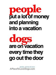 people vacations vs dog vacations • from  APlaceToLoveDogs.com • dog dogs puppy puppies cute doggy doggies adorable funny fun silly photography typography quotes
