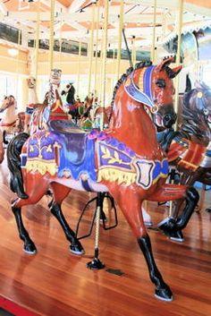 Google Image Result for http://0.tqn.com/d/longisland/1/0/E/A/-/-/Brown-carousel-horse-nunleys-carousel-267x400.JPG