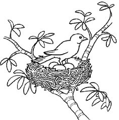 Spring coloring pages for adults and teenagers Spring Coloring Pages, Animal Coloring Pages, Coloring Pages To Print, Adult Coloring Pages, Coloring Books, Beautiful Flower Drawings, Watercolor Fabric, Girls Quilts, Bird Drawings