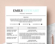 Word Resume Template 2007 Resume Template Ms Word  Professional Cv Template  Creative Resume .