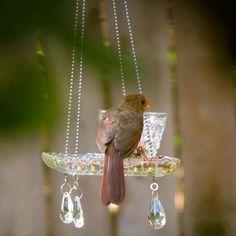 Hanging Crystal {Teacup} Bird Feeders!