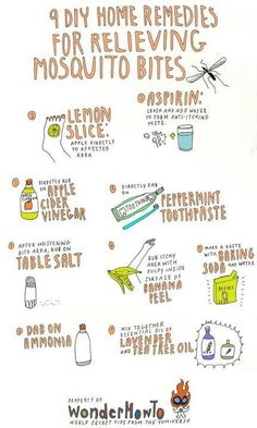 To: 9 DIY Home Remedies for Relieving Itchy Mosquito Bites 9 DIY remedies for mosquito bites.apple cider vinegar can do DIY remedies for mosquito bites.apple cider vinegar can do anything! Mosquito Bite Relief, Bug Bite Relief, Mosquito Bite Treatment, Mosquito Bite Cure, Mosquito Bite Swelling, Bug Bite Treatment, Mosquito Trap, Mosquito Control, Mosquito Killer
