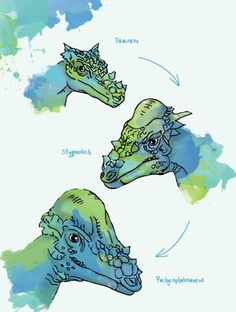Shape-shifting dinosaurs - creation.com