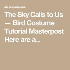 The Sky Calls to Us — Bird Costume Tutorial Masterpost Here are a...