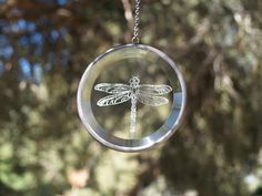 hand engraved glass dragonfly etching