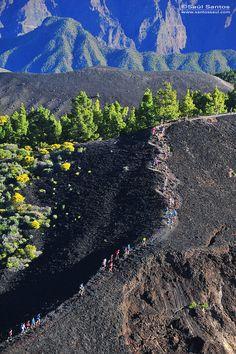 Transvulcania 2014, a su paso por La Ruta de Los Volcanes. Isla de La Palma Saul Santos Diaz - photographer