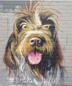 +++. . . . Street-wall graphic art - L'arte grafica sui muri. Street art come forma d'arte…
