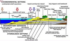 The Treasure Beaches Report brought to you from Florida's Treasure Coast.: 1/4/15 Report - Super Hot Metal Detecting Experiences: Location and Conditions. More On Beach Zones.