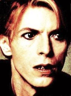 david bowie | David Bowie - david-bowie Photo