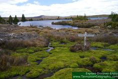 +++ Explore-Discover-Enjoy +++ Tasmanian Geographic  +++ A Free Online Magazine +++ http://www.tasmaniangeographic.com