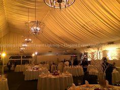 The EEL Team also enhanced the gold branch centerpieces by illuminating them with pin spot lighting.