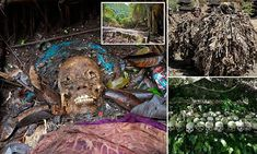 Inside the Balinese village where bodies are laid out to rot in cages
