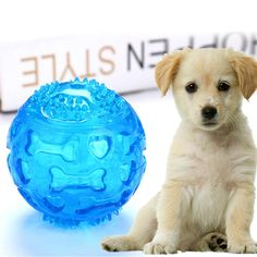 Dog Puppy Cat Kitten Baby Fun Flashing Spiky Squeaky Glow Ball Gift REDUCED