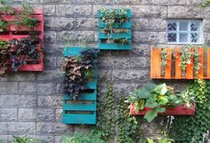 recycled pallet wall garden - maybe brighten up an alley?