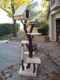 DIY Pinspiration: Make a Cat Tree with real branches for cool, natural look. Hom… DIY Pinspiration: Make a Cat Tree with real branches for cool, natural look. Homemade for Cats. Outdoor Cat Tree, Cat Scratching Tree, Cat Tree House, Cat House Diy, Diy Cat Tree, Cat Towers, Photo Chat, Cat Enclosure, Cat Room