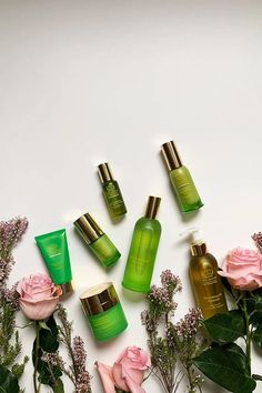 Tata Harper Skincare Schweiz: Die grosse Hey Pretty Review mit Produktetipps und Brand Love