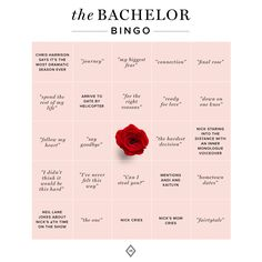 If you always wanted to throw an Academy Awards party, but don't know where to start, we've got you. Here are our top ideas for throwing the best Oscars viewing party that your guests will be talking for weeks. Bachelor Premiere, Bachelorette Premiere, The Bachelorette, Bachelor Games, Bachelor Parties, Bachelor Bracket, Party Like Gatsby, Party Props, Fiestas