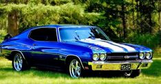 Classic American Muscle Cars: Chevy, Mopar, Ford Mustang, Shelby Cobra, Camaro, Super Bee, Dodge, Charger, Challenger, Cuda