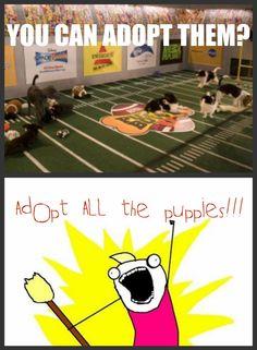 Puppy Bowl!!