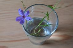 I Wasn't Expecting That...: 9 Up-cycle Glass Jars And Bottle Flower Arrangements...