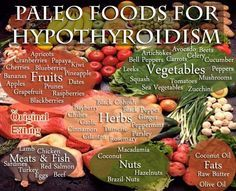 Hypothyroidism Diet - Learn facts that other sites wont tell you about the foods for Hypothyroidism the Paleo Diet! Find the Paleo diet food list Paleo diet recipes Thyrotropin levels and risk of fatal coronary heart disease: the HUNT study. Dieta Paleo, Healthy Life, Healthy Living, Healthy Choices, Healthy Foods, Paleo Diet Food List, Diet Foods, Eating Paleo, Hypothyroidism Diet