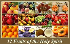 """12 Fruits of the Holy Spirit: """"But the fruit of the Spirit is, charity, joy, peace, patience, benignity, goodness, longanimity, Mildness, faith, modesty, continency, chastity. Against such there is no law."""" -Galatians 5:22-23 (Douay-Rheims Version) In contrast, the fruit of the Spirit is love, joy, peace, patience, kindness, generosity, faithfulness,  gentleness, self-control. Against such there is no law.-  Galatians 5:22-23(NABRE)"""