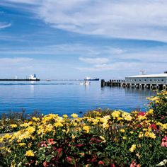 The harbor with flowers