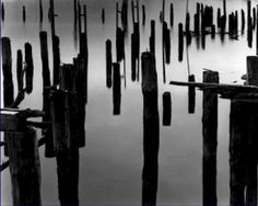 Black and White Photo 8X10 Piles in Fog 1968 $10.99