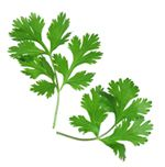 Parsley isn't just pretty! It's got some great health benefits too!