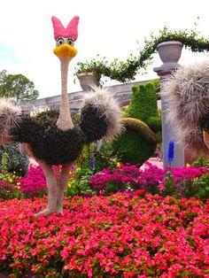 Epcot Flower and Garden Festival 2012