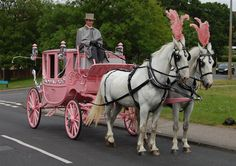 Pink horse drawn carriage.