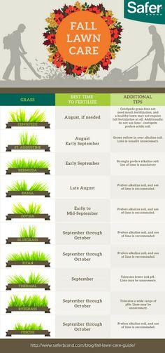 Fall Lawn Care Tips CLC Landscape Design Lawn Care Pinterest