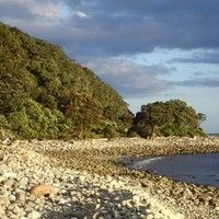 Stream Hauturu: Waves by nature sounds of nz from desktop or your mobile device Nature Sounds, Waves, Outdoor, Outdoors, Outdoor Living, Garden, Wave, Beach Waves