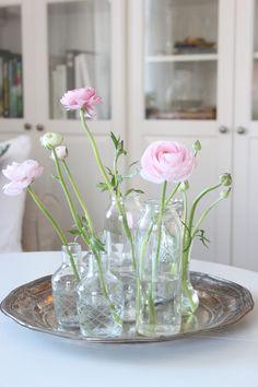 Vackert med gamla vaser och härligt vackra Ranunkel