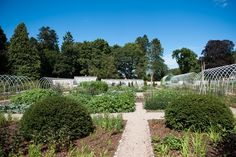 The walled kitchen garden on the Estate has undergone a full revamp since 2017