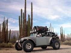 Yep, I want to build one. What a beast of a Bug.