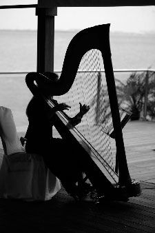 I love the harp. I want to learn how to play!