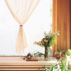 Sachiさんの、植物のある部屋,造作窓,カーテン 白,リビング,のお部屋写真