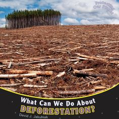 What Can We Do about Deforestation? (Protecting Our Planet (Paperback)) What Is Deforestation, Rainforest Deforestation, Earth Overshoot Day, Animal Facts For Kids, Rainforest Animals, College Library, David J, Reading Levels, Alternative Energy
