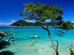 Abel Tasman National Park    http://www.australiaholidays.ru/Novaya-Zelandiya/Spravka/Dostoprimechatelnosti/Nacionalnye-parki-Novoj-Zelandii/Abel-Tasman