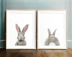 Baby animal prints PRINTABLE art Woodland animals Safari