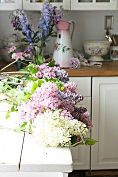 Beautiful Lilac x My Flower, Beautiful Flowers, Fresh Flowers, Shabby Chic Romantique, Lavender Cottage, My Secret Garden, Dahlia, Floral Arrangements, Floral Wreath